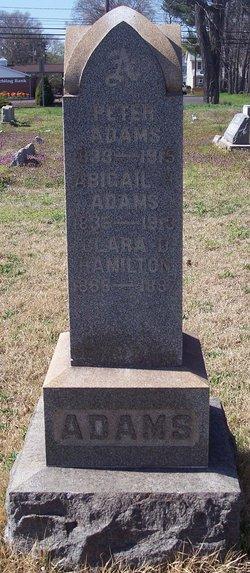 Abigail H <i>Presley</i> Adams