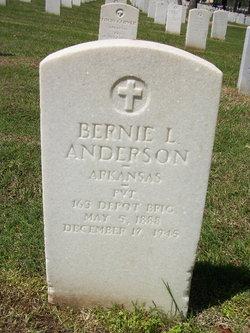 Bernie L Anderson