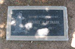 Michael V. Bednark