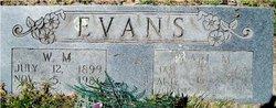 William Marion Evans