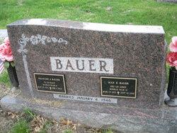 Frances A <i>Lee</i> Bauer