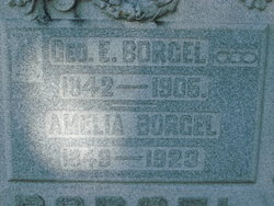 Amelia <i>Heinke</i> Bogel