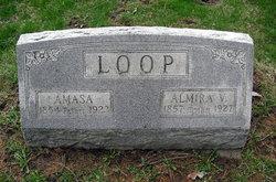 Amasa Loop