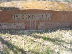 Sallie Ann <i>Young</i> Becknell
