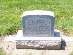 Joseph J Libeu