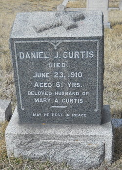 Daniel J Curtis