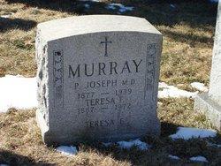 Dr Patrick Joseph Murray