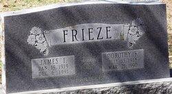 James F Frieze