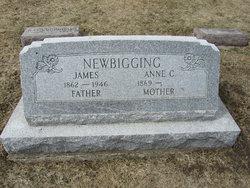 James Newbigging