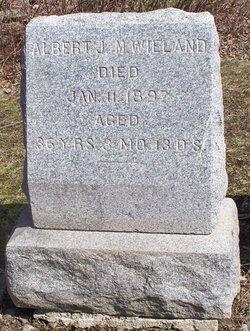Albert J M Wieland