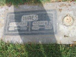 Andrew J Hines