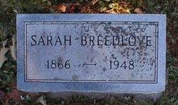 Sarah Jane <i>Bates</i> Breedlove