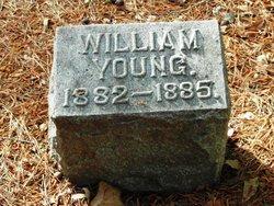 William Young Sturgeon