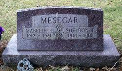 Sheldon Edward Mesecar