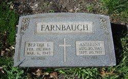 Anthony Farnbauch, II