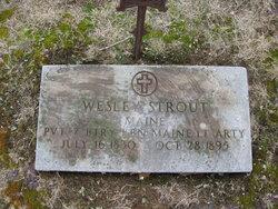 Pvt John Wesley Strout