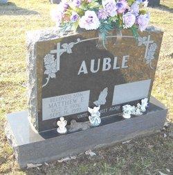 Matthew E Auble