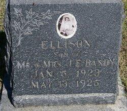 Jesse Ellison Bandy