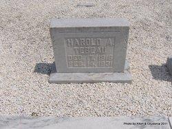 Harold A Tebeau
