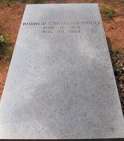 Andrew Cornelius Tingle