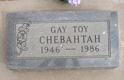 Gay Toy Chebahtah
