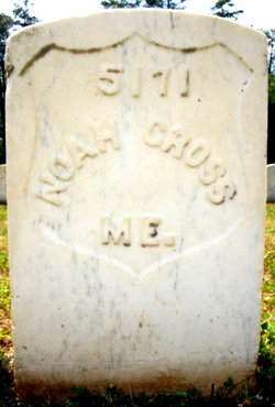 Noah Cross
