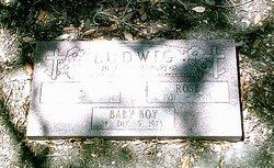 Baby Boy Ludwig