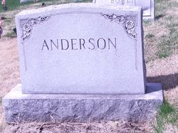 Andrew S Anderson