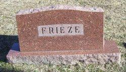 Arkley Wilson Frieze