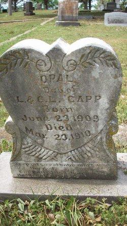 Opal Capp