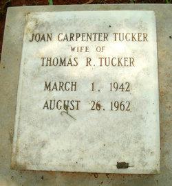 Joan <i>Carpenter</i> Tucker
