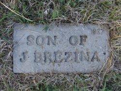 Son of J Berzina