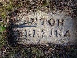 Anton Berzina