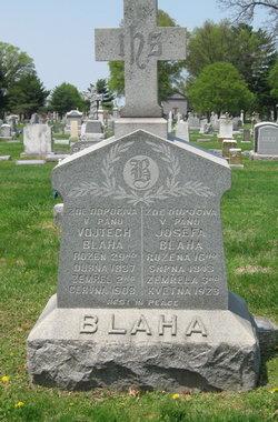 Albert Blaha