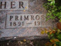 Primrose <i>Martin</i> Fisher
