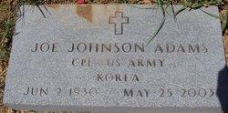 Joe Johnson Adams