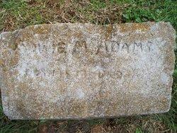 Annie M. Adams