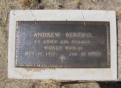 Andrew Bertko