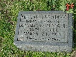 Michael Lee Adcox