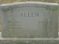 Daisy D Allen