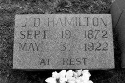 James David Hamilton