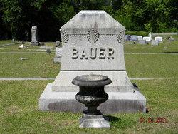Dr Henry L. Bauer