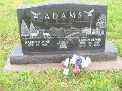 Aaron Elwin Adams