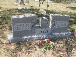 Irene S Ellis