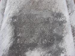 Will Banna <i>Williams</i> Cone