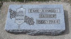 Emil Aamodt