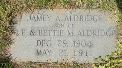 Jamey A Aldridge