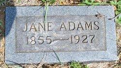 Jane Jennie <i>Wilson</i> Adams