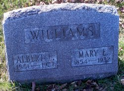Albert E Williams