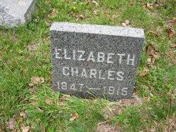 Elizabeth <i>Lowell</i> Charles